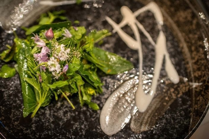 foraged meal salad course